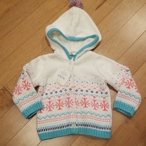 Gymboree Multicolored Knitted Hooded Sweater